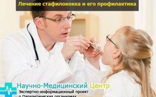 Симптомы заражения золотистым стафилококком и профилактика недуга