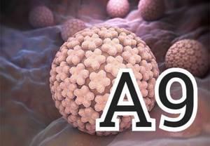 ВПЧ А9: методы диагностики заболевания и лечение медикаментами