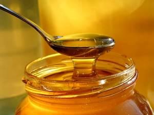 Алоэ с медом от кашля: эффективное и полезное народное средство