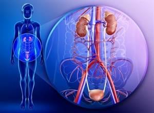 Туберкулез простаты: причины возникновения и особенности лечения