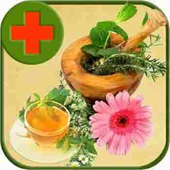 Что пить от мастопатии: рекомендации врачей и народные рецепты