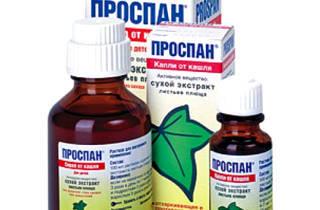 Как лечить мокрый кашель с применением препаратов и без них