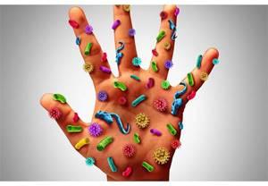 ВПЧ инфекция: главные пути передачи и методы лечения патологии