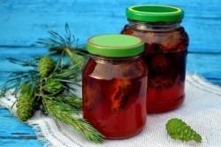 Сосновые почки от кашля: рецепт приготовления простого лекарства