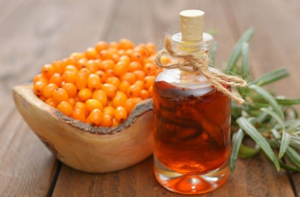 Облепиховое масло от храпа: можно ли приготовить самостоятельно