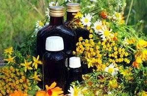 Травы при аденоме простаты: какие выбрать и как применять