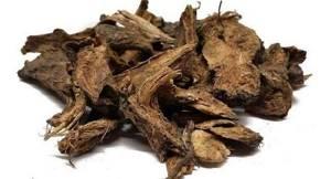 Девясил от кашля: полезные свойства и способы применения средства