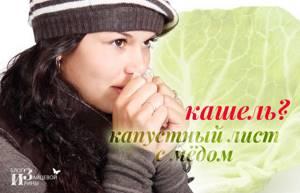 Капустный лист с медом от кашля: надежное народное средство
