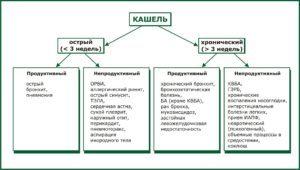 Кашель: разновидности с причинами развития и методами лечения