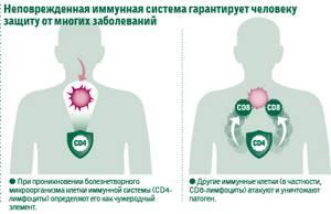Как повысить иммунитет при ВПЧ препаратами и народными средствами