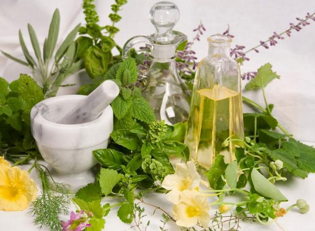Аптечный сбор трав при простатите: что входит в его состав