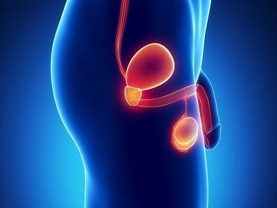 Атония простаты: клинические проявления и лечебные мероприятия
